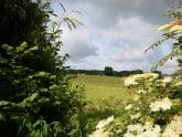 Retreat 4588 – Tiverton, Devon