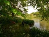 Retreat 9231 – Tiverton, Devon