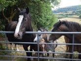 Retreat 2130 – Brecon, Wales