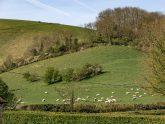 Retreat 12202 – Shaftesbury, Dorset