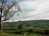 Retreat 13083 – Knighton, Heart of England