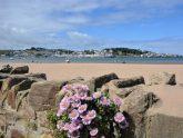 Retreat 17559 – Bideford, Devon