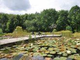 Retreat 17604 – Ledbury, Heart of England