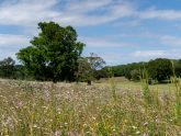 Retreat 18616 – Halesworth, East of England