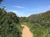 Retreat 21118 – Burnham-on-sea, Somerset