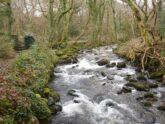 Retreat 23868 – Talybont, Wales
