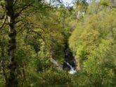 Retreat 25064 – Kirriemuir, Central Scotland