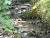 Retreat 27502 – Machynlleth, Wales